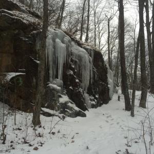 Winter Walk_10