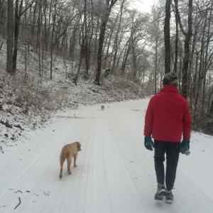 Winter Walk_4