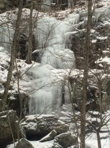 Winter Walk_9